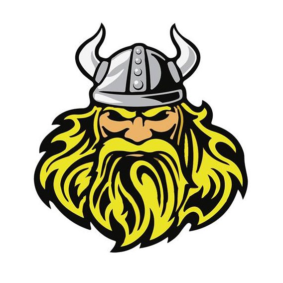 Viking Power and Strength's profile pic
