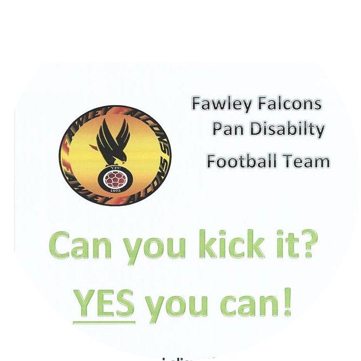 Fawley Falcons Pan Disability's profile pic